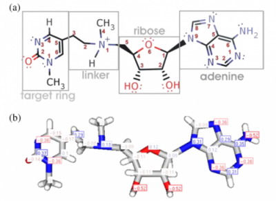 In silico design of the first DNA-independent mechanism-based inhibitor of mammalian DNA methyltransferase Dnmt1